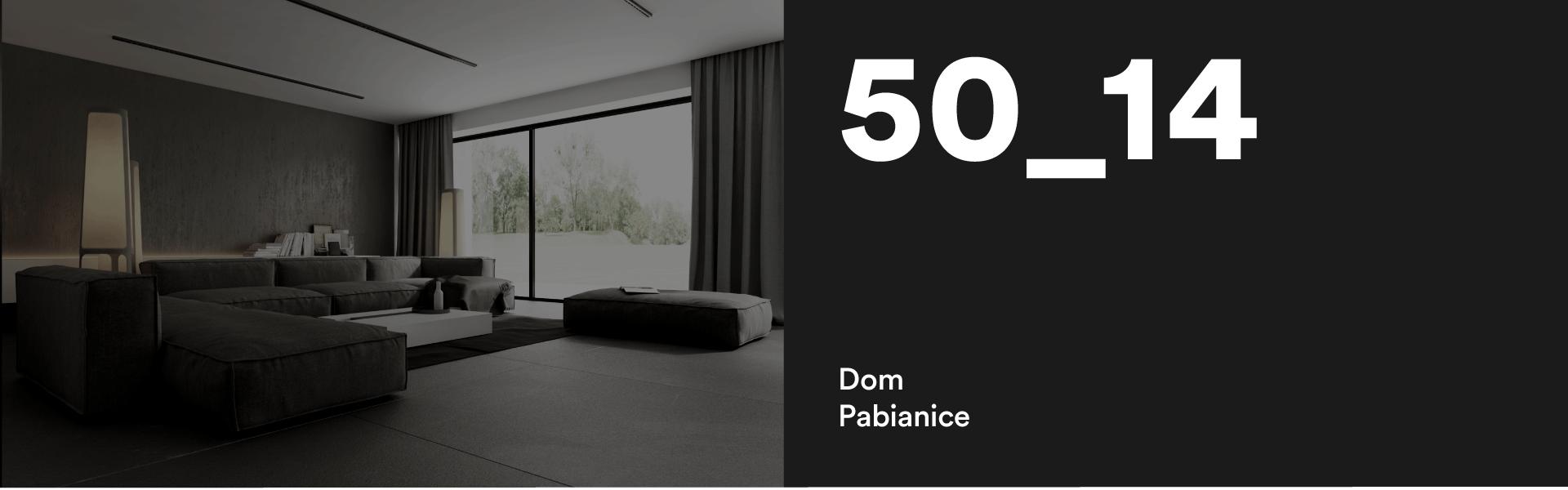 50_14 Dom w Pabianicach