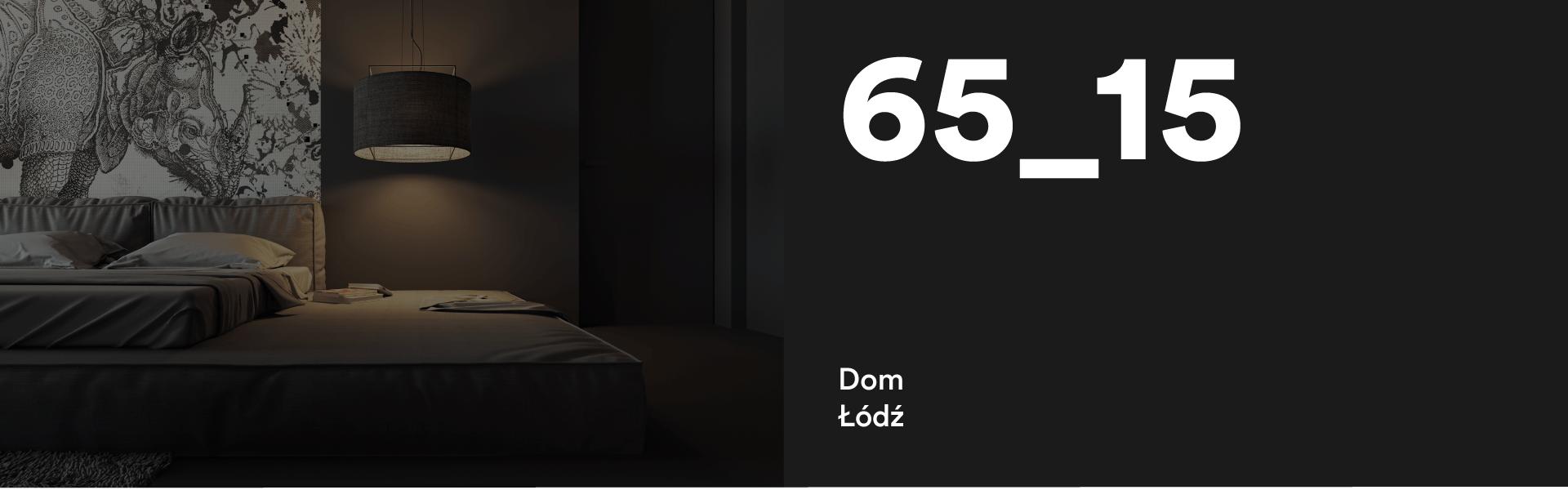 65_15 Dom w Łodzi